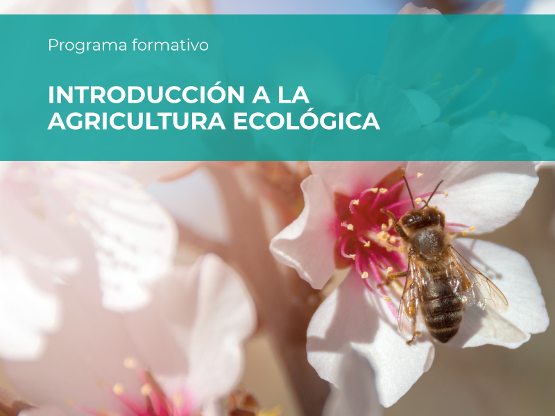 introduccion-agricultura-ecologica